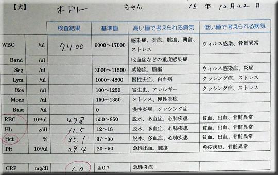 20151222_CBC.jpg