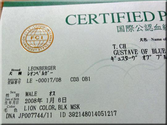 pedigree_1205.jpg