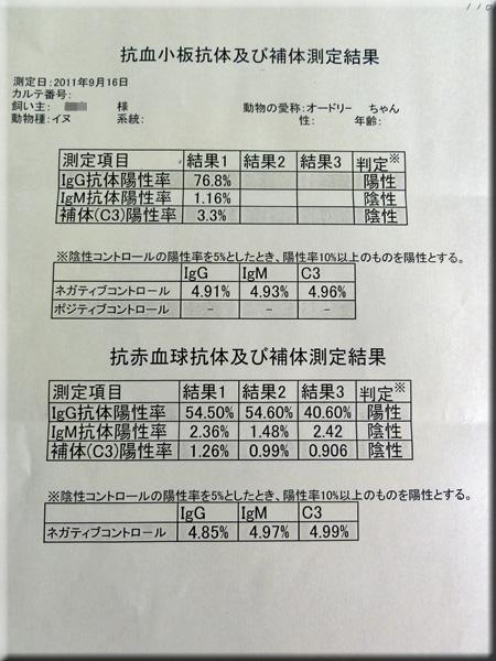 result0927azabu02.jpg