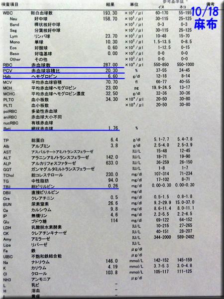 result1018azabu.jpg