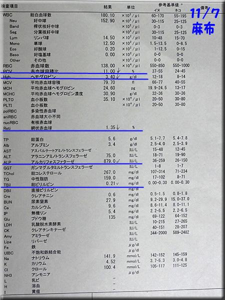 result1107azabu.jpg