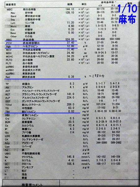 result120110azabu.jpg