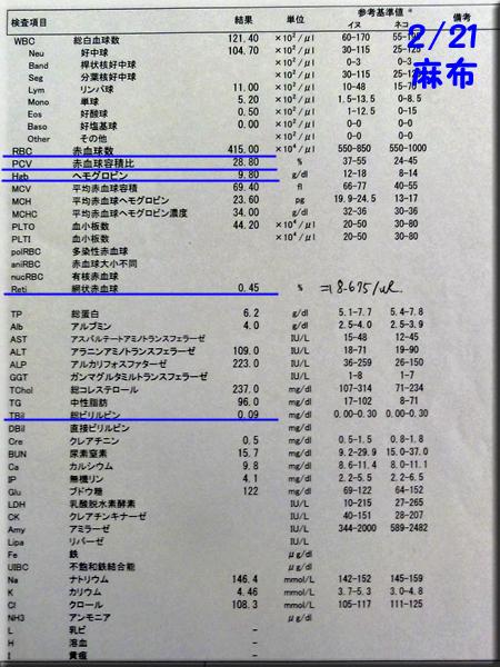 result120221azabu.jpg