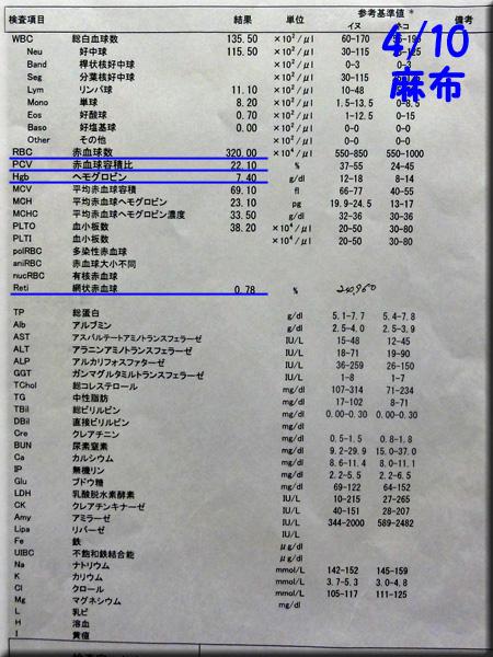 result120410azabu.jpg