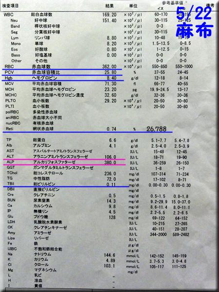 result120522azabu.jpg