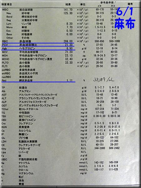 result120601azabu.jpg