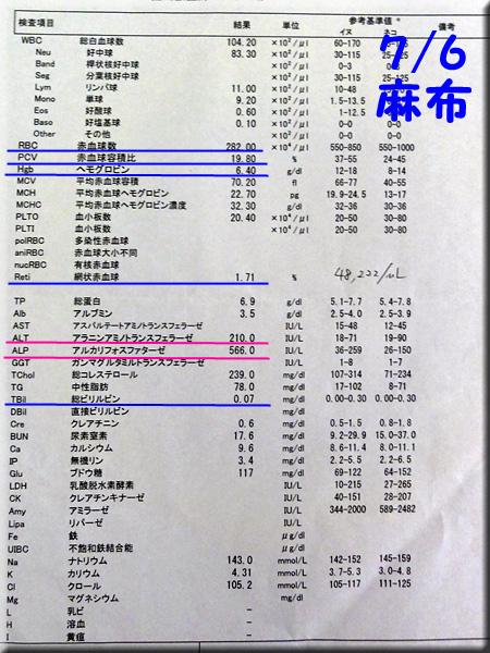 result120706_01azabu.jpg