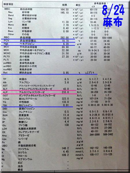 result120824azabu.jpg