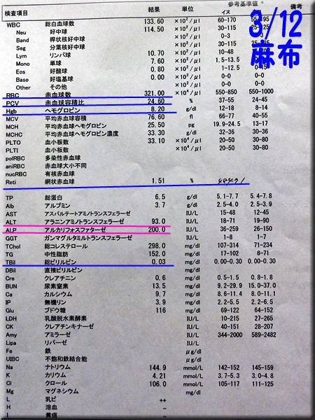 result_130312_azabu.jpg