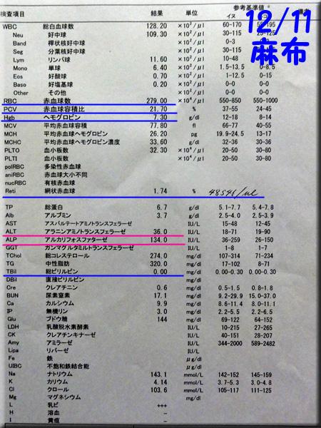 result_20121211_azabu.jpg