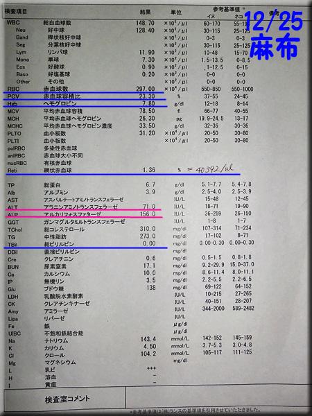 result_20121225_azabu.jpg