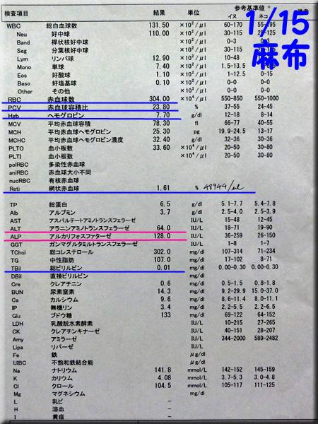 result_20130115_azabu.jpg