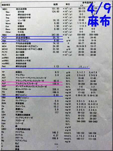 result_20130409_azabu.jpg
