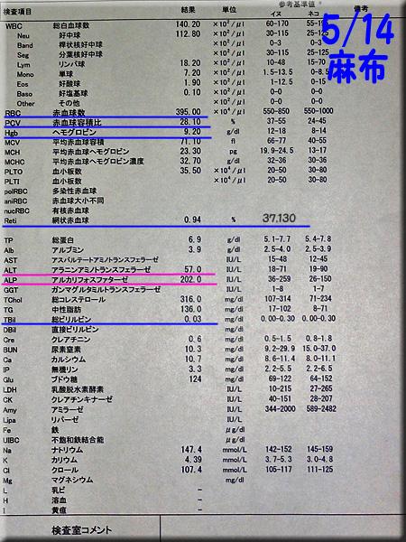 result_20130514_azabu.jpg