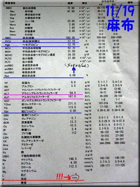 result_20131119_azabu.jpg