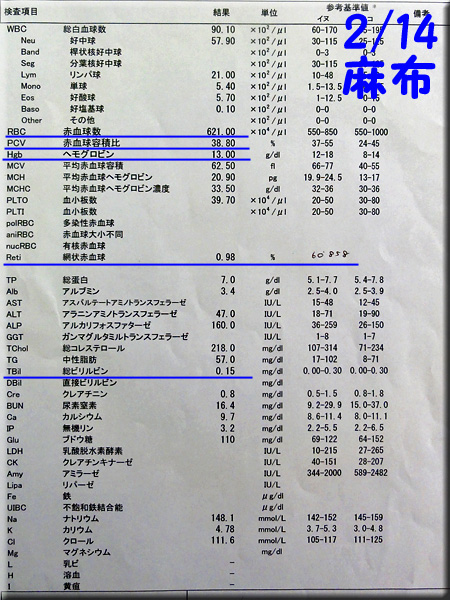 result_20140214_azabu.jpg