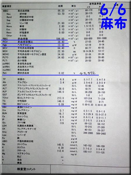 result_20140606_azabu.jpg