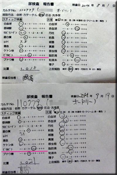 result_2014091902_azabu.jpg