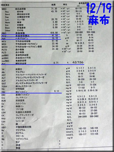 result_20141219_azabu.jpg