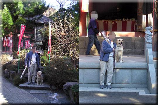 2005010201hinatayakusi.jpg