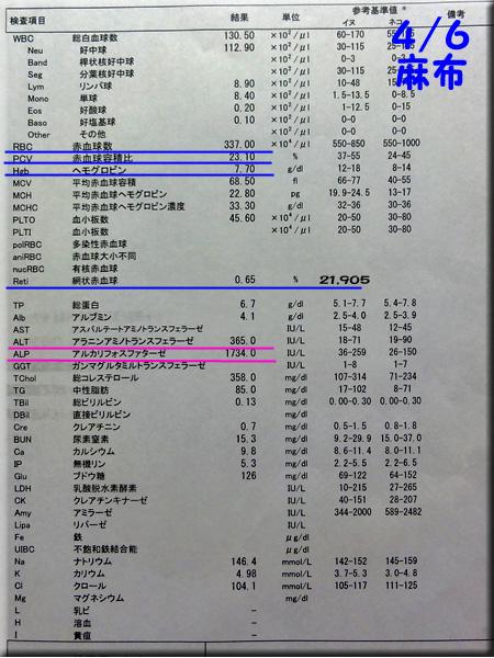 result120406azabu.jpg