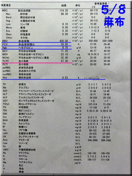 result120508_1azabu.jpg