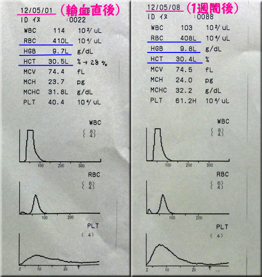 result120508_2azabu.jpg