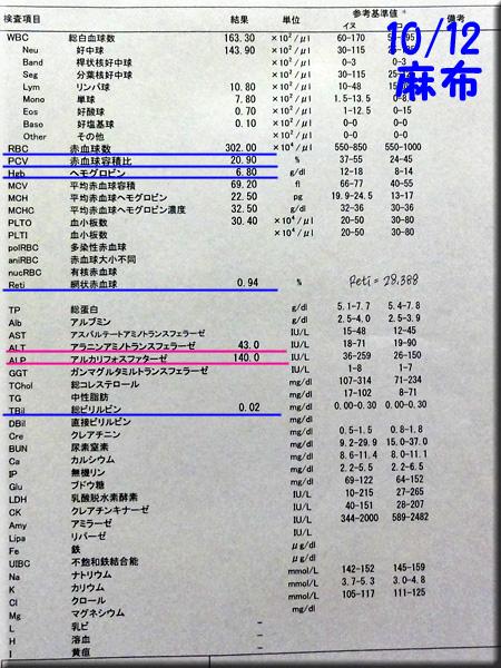 result_121012_azabu.jpg