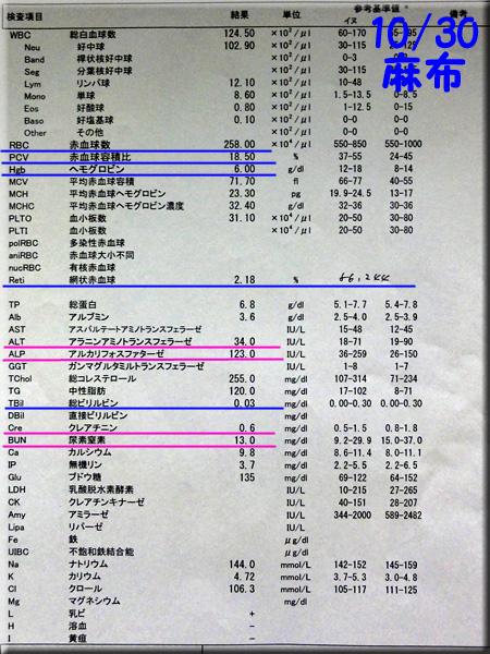 result_121030_azabu.jpg