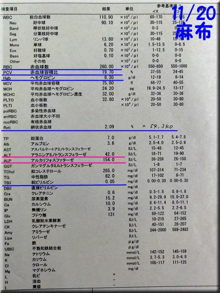 result_20121120_azabu.jpg