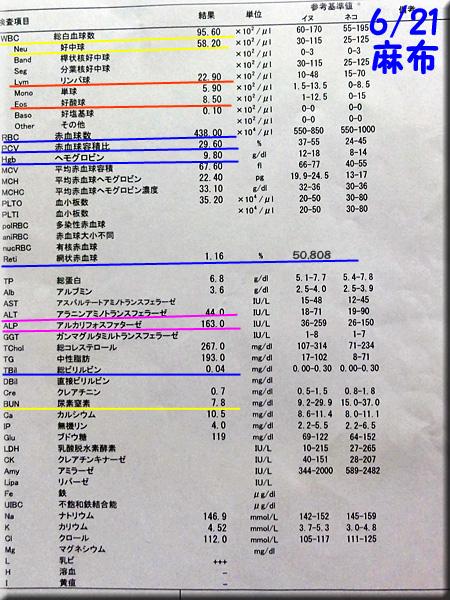 result_20130621_azabu.jpg
