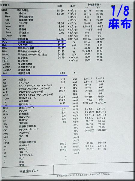 result_20160108_azabu.jpg